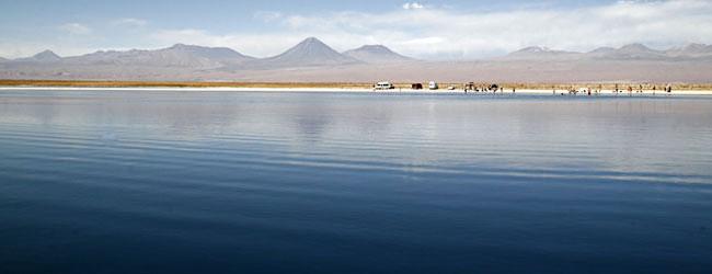 Atacama: 3º dia | Tarde: Lagunas Cejar e Tebinquiche