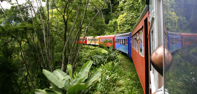 A train ride through the Serra do Mar