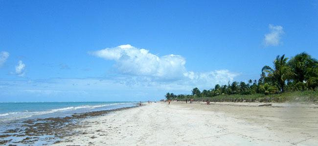 Rota Ecológica, em Alagoas | Por CarlaZ