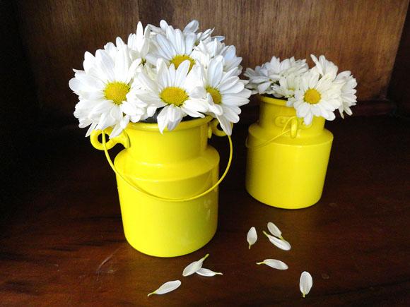 Flores em pequenas leiteiras amarelas