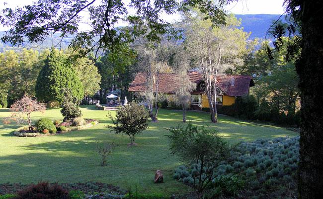 Parque de Lavandas: a Provence chega a Gramado