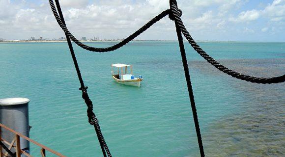 Corais, peixinhos coloridos e águas transparentes nas piscinas naturais de Picãozinho, João Pessoa