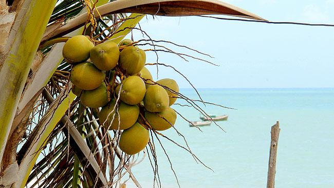 Joao Pessoa Litoral Sul Praias Como chegar Jacumã 2