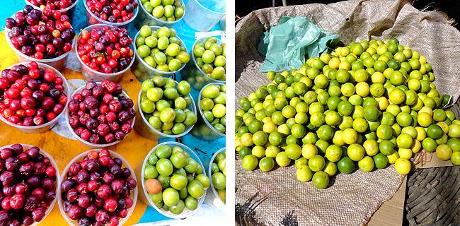Feira de Sao Joaquim Salvador Bahia frutas coloridas