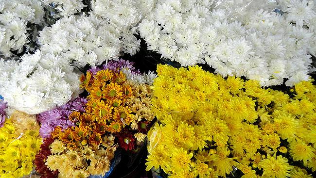 Feira de Sao Joaquim Salvador flores