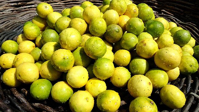 Feira de Sao Joaquim Salvador limão
