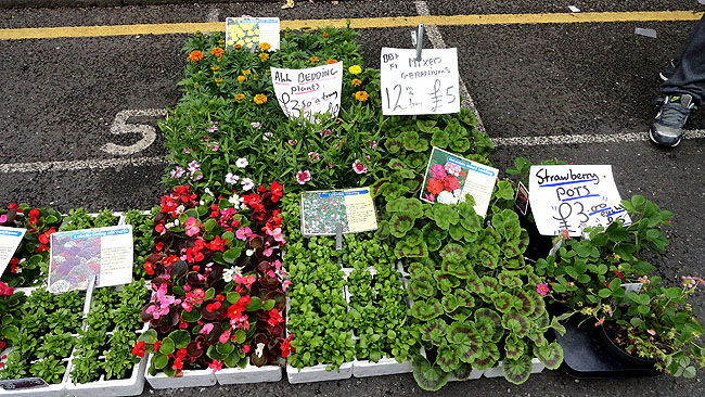 Columbia Road Flower Market Londres Como chegar