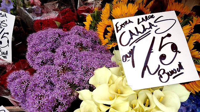 Columbia Road Flower Market: o cantinho mais colorido de Londres fica na região mais descolada da cidade
