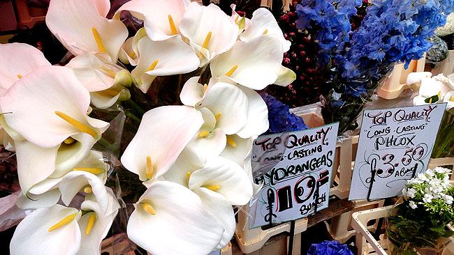 Columbia Road Flower Market Londres Pontos turísticos 3