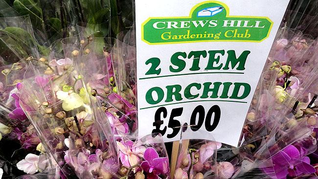 Columbia Road Flower Market Londres Shoreditch 3