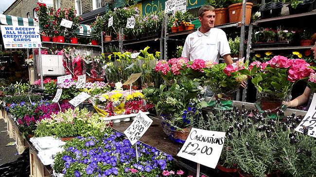 Columbia Road Flower Market - O que fazer em Londres - 2