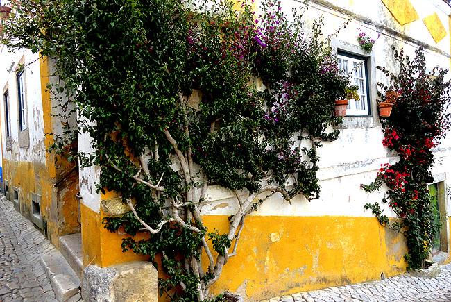 Obidos Portugal Casas Brancas