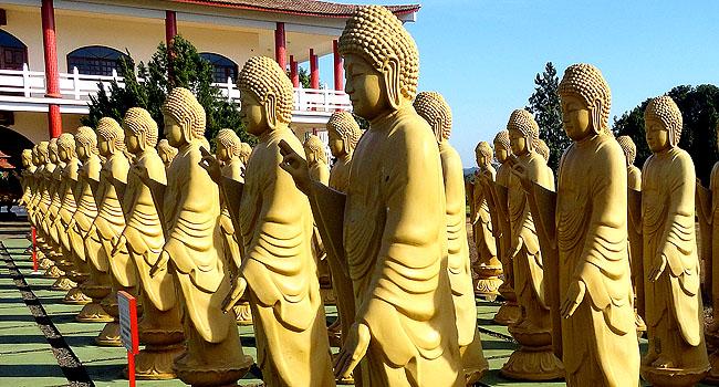 Templo Budista Foz do Iguacu 108 estatuas budas 02