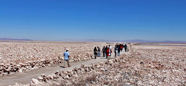 Deserto Atacama Chile - Salar Atacama