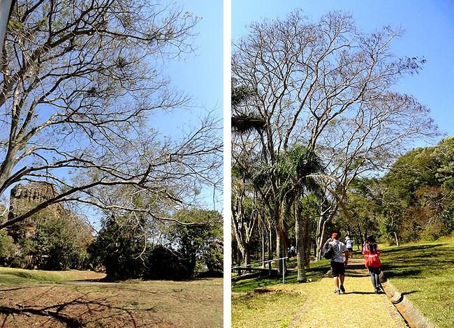 Parque Estadual Vila Velha - Parana