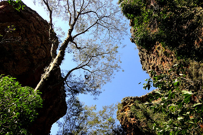 Parque Estadual Vila Velha - Ponta Grossa - Parana - Arenitos 13