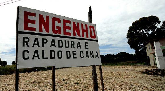 Rota dos Engenhos de Rapadura: conheça o processo de produção da tradicional iguaria brasileira no Ceará