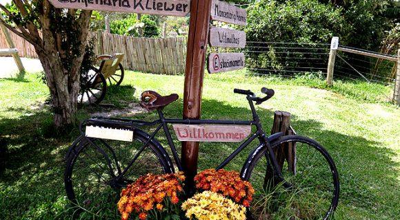 Colônia Witmarsum: café colonial, história alemã menonita e descanso ao lado de Curitiba