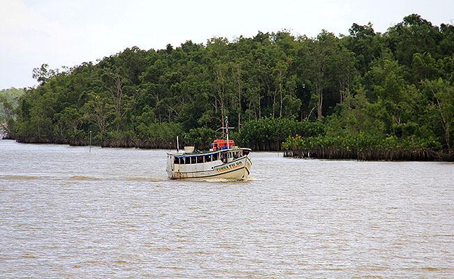 Belem Ilha de Marajo Paisagem 1