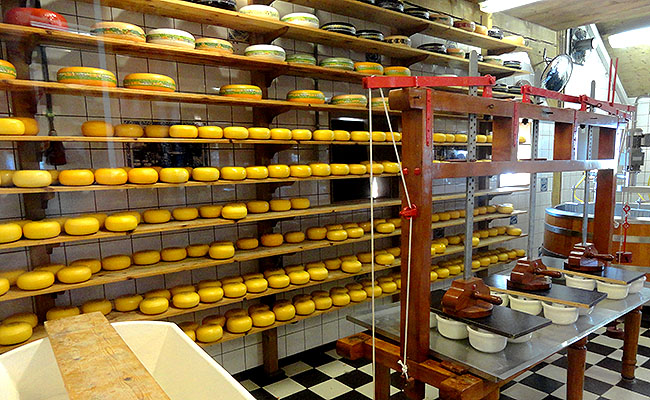 Zaanse Schans Holanda queijaria