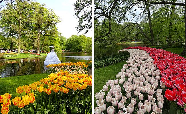 como-visitar-o-keukenhof-jardim-de-tulipas-holanda-cantora