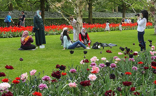 como-visitar-o-keukenhof-jardim-de-tulipas-holanda-fotos