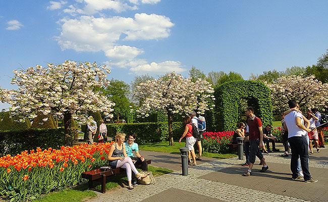 como-visitar-o-keukenhof-jardim-de-tulipas-holanda-jardins-pessoas