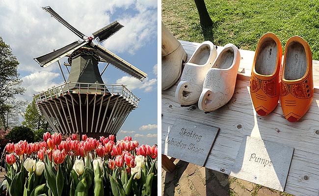 como-visitar-o-keukenhof-jardim-de-tulipas-holanda-moinho