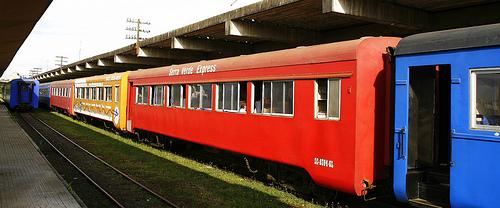 De trem pela Serra do Mar