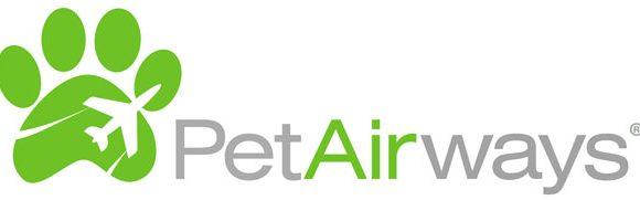 Pet Airways: avião exclusivo para animais domésticos