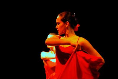 Flamenco: escultura em movimento