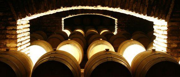 Concha y Toro: como ir por conta própria à vinícola preferida dos brasileiros no Chile